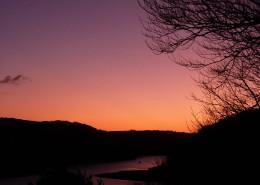 Carne-Creek-sunset